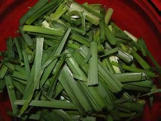 Food Photographs - Picture of Coursely chopped spring onions in bowl ready for cooking in chinese meal